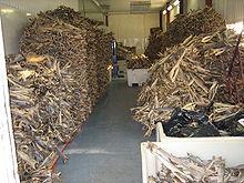 stockfish_warehouse_norway.jpg